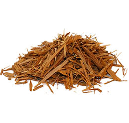 YOHIMBE ROOT BARK, BUY YOHIMBE